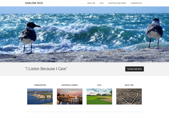 Darlene Rice Real Estate Website Design